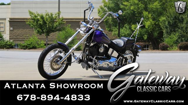 1993 Harley Davidson FXST <br><span style='font-size: large; font-style: italic'><b>Custom </b></span>
