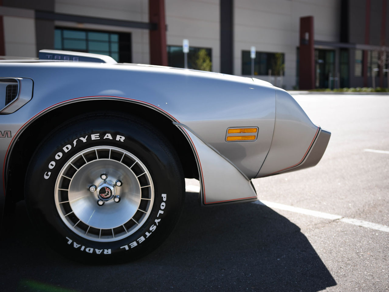 1979 Pontiac Trans Am 18