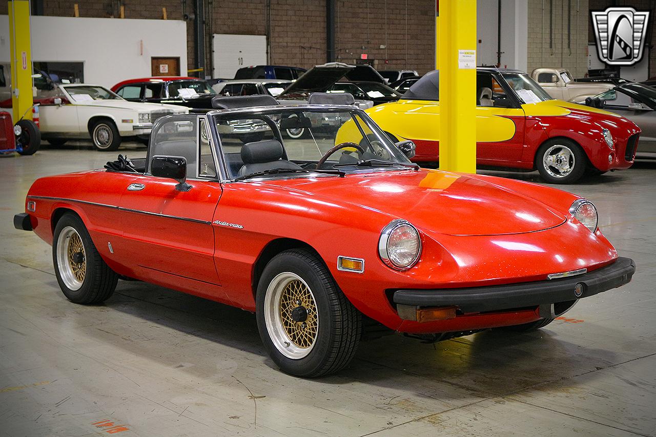 1979 Alfa Romeo Spider 3