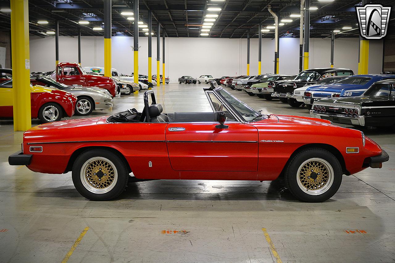 1979 Alfa Romeo Spider 4