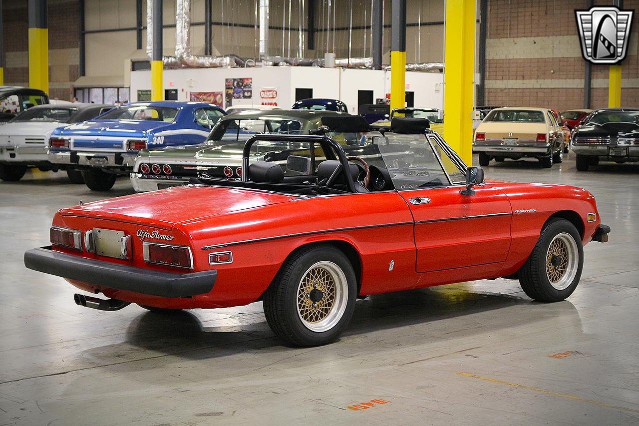 1979 Alfa Romeo Spider 5