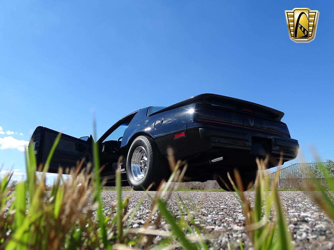 1987 Pontiac Firebird 91